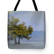 Tree And The Rainbow Tote Bag