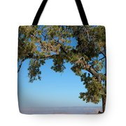 Tree Arch Tote Bag