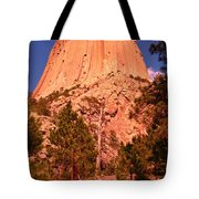 Tree At Devils Tower Tote Bag