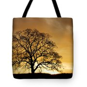 Tree At Golden Sunrise Tote Bag
