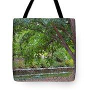 Tree At Norfolk Botanical Garden 4 Tote Bag