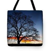 Tree At Sunrise Tote Bag