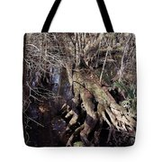 Tree Roots At The River Tote Bag