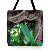 Tree Branch Tote Bag