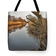Tree By The River Tote Bag