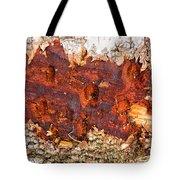 Tree Closeup - Wood Texture Tote Bag