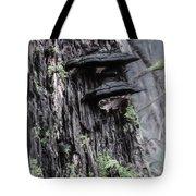 Tree Conk Tote Bag