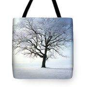 Tree Covered In Hoar Frost Tote Bag