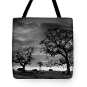 Tree Family In Black And White Tote Bag