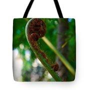 Tree Fern Tote Bag
