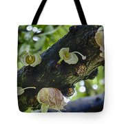 Tree Flowers Tote Bag