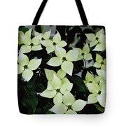 Tree Flowers Tote Bag
