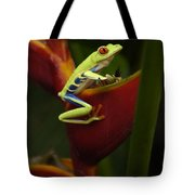 Tree Frog 3 Tote Bag