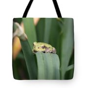 Tree Frog Up Close Tote Bag