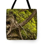 Tree Grows From Rock Outcrop Tote Bag