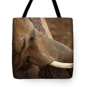 Tree Hugging Elephant Tote Bag