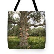 Tree Hugging Green Ecological Concept  Tote Bag