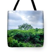 Marula Tree In African Sky Tote Bag