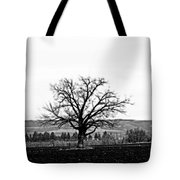 Tree In Black And White Tote Bag