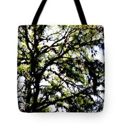 Tree In Blue Ridge Mountains Tote Bag