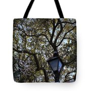 Tree In French Quarter Tote Bag