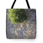 Tree In Grass From Balloon Tote Bag