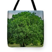 Tree In Nature Tote Bag