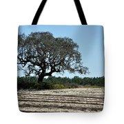 Tree In Plowed Field Tote Bag