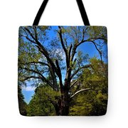 Tree In Rock Hill Tote Bag