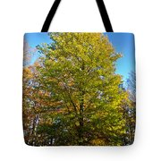 Tree In The Cemetery Tote Bag