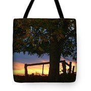 Tree In The Sunset Tote Bag