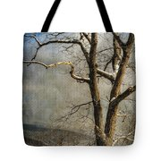 Tree In Winter Tote Bag by Lois Bryan