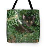 Tree Kitten Tote Bag