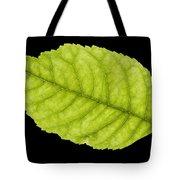 Tree Leaf Tote Bag