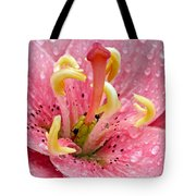 Tree Lily Upclose With Ant Tote Bag