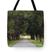 Tree Lined Drive - D008564 Tote Bag
