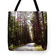 Tree Lined Road Tote Bag by Crystal Joy Photography