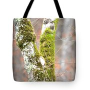 Tree Moss Abstract Tote Bag