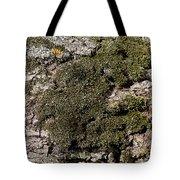 Tree Moss Tote Bag
