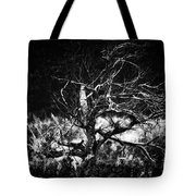 Tree Of Darkness Tote Bag