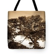 Tree Of Life In Sepia Tote Bag