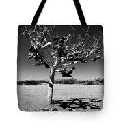 Tree Of Lost Soles 2 Tote Bag