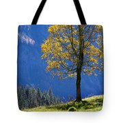 Tree Of Seasons Tote Bag