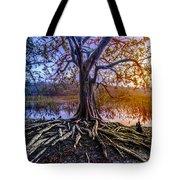 Tree Of Souls Tote Bag by Debra and Dave Vanderlaan