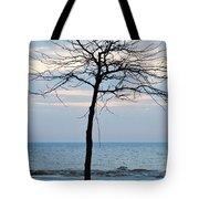 Tree On Beach Tote Bag
