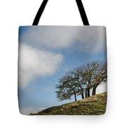 Tree On Hillside Tote Bag