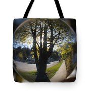 Tree On The Street Tote Bag