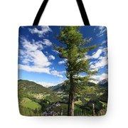 tree over Cordevole valley Tote Bag