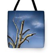 Tree Pointer Tote Bag