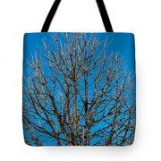Tree Profile Tote Bag